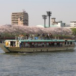 01 to enjoy cherry blossoms in full bloom from Sumida River cherry blossom viewing observation deck