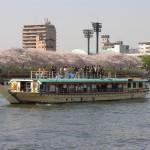 隅田川花見 展望デッキから満開の桜を愛でる01